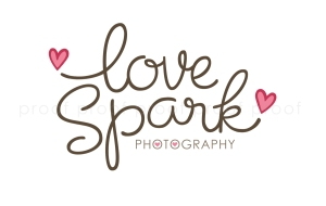 love spark | custom logo | by Erika Jessop