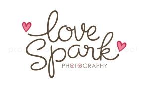 love spark | custom logo | by Erika Jessop